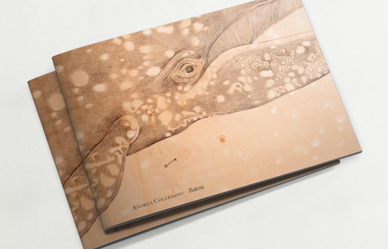 Chiara Lera - Andrea Collesano, catalogo - 2013